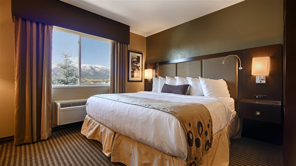Best Western Vista Inn - Guest Room