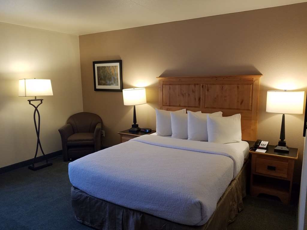 Best Western Brighton Inn - Enjoy our spacious single queen room.