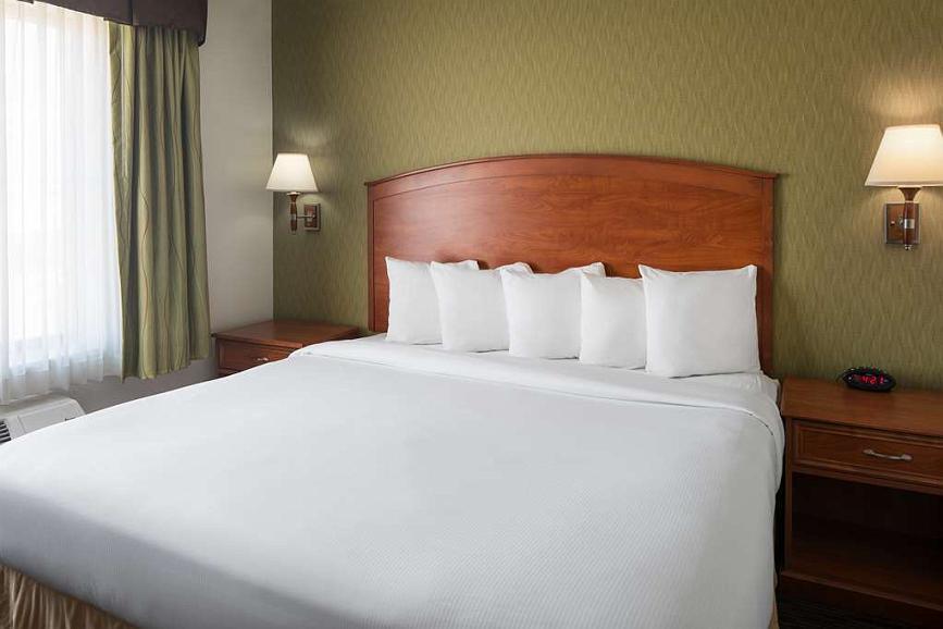 Amazing Hotel In Denver Best Western Plus Denver International Spiritservingveterans Wood Chair Design Ideas Spiritservingveteransorg