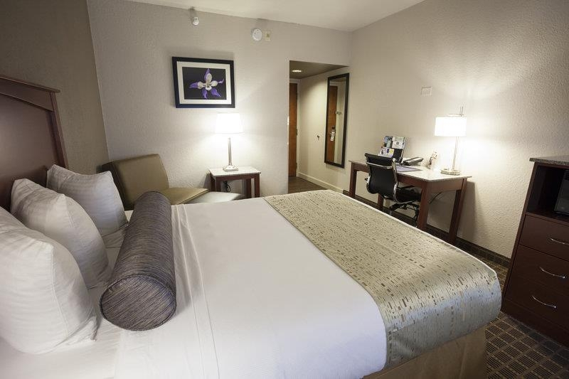 Best Western Plus Peak Vista Inn & Suites - Guest Room