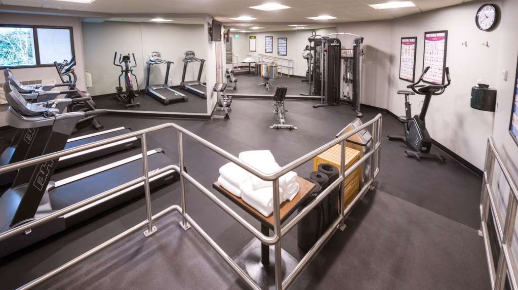Best Western Northgate Inn - Comfortable workout room features two treadmills, elliptical, bike. For your convenience we have a weight system and free weights.