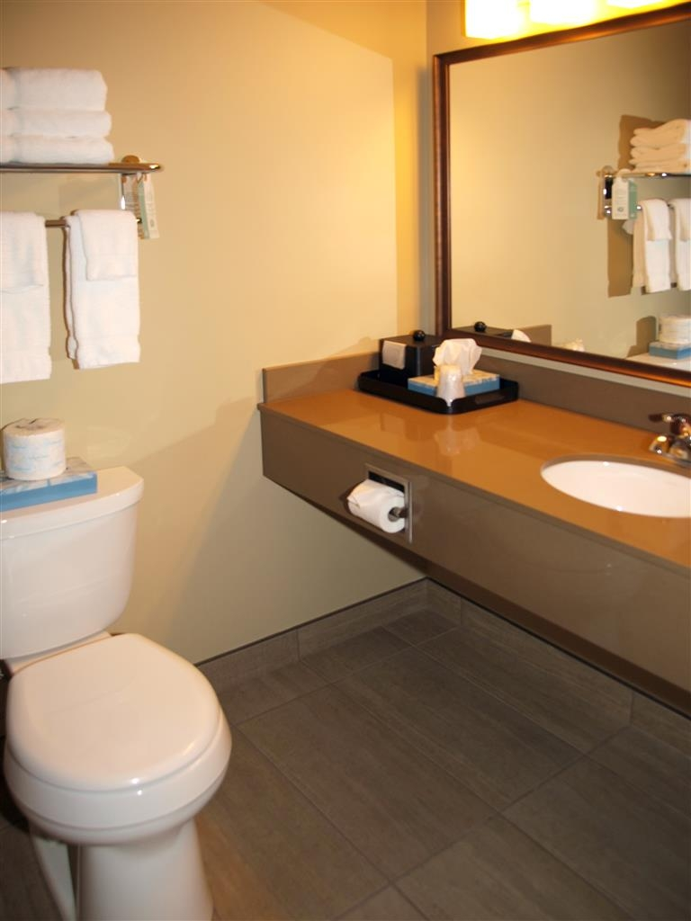 Best Western Plus Winnipeg West - Baño