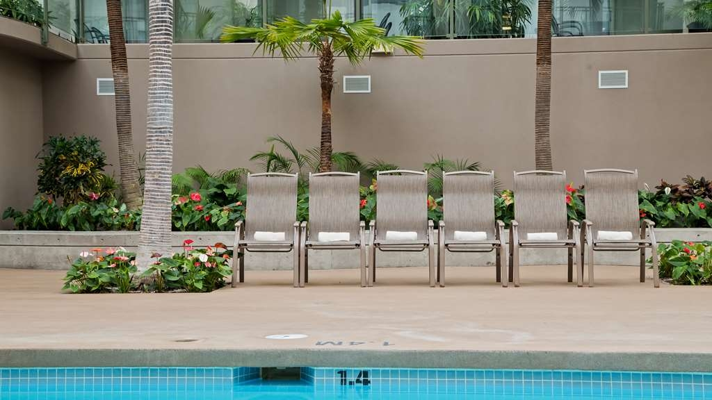 Best Western Plus Lamplighter Inn & Conference Centre - Vista de la piscina