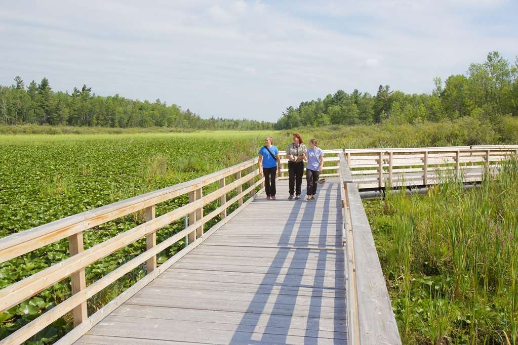 Best Western Parkway Inn & Conference Centre - Calling all nature buffs! Catch glimpses of wildlife, take a leisurely walk through the Upper Canada Migratory Bird Sanctuary's nature trails.