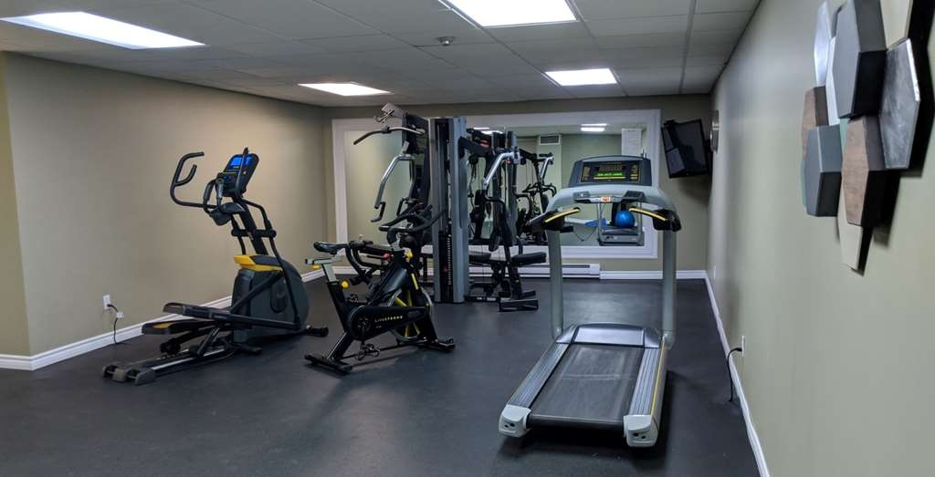 Best Western Swan Castle Inn - Sala fitness