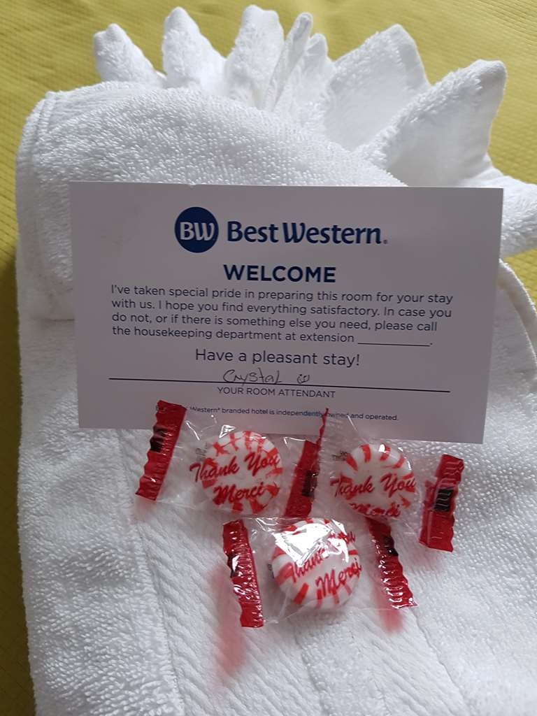 Best Western Plus Durham Hotel & Conference Centre - Our Housekeeping staff take pride in making your stay enjoyable and comfortable.
