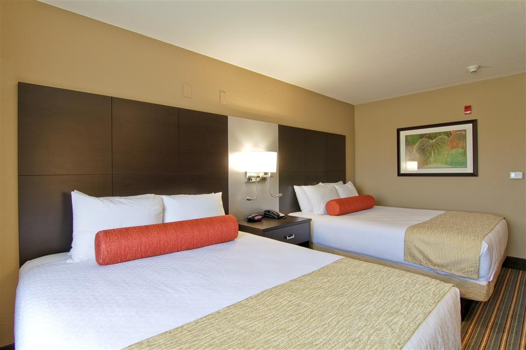 Best Western Plus Woodstock Inn & Suites - Deluxe room with all the comforts of home!