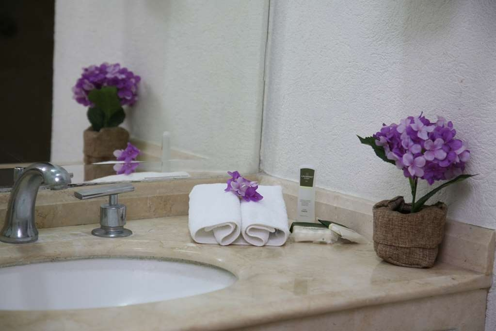 Best Western Hotel Poza Rica - Mobility Accessible Bathroom
