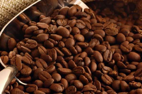Best Western Posada Chahue - Coffee Farms in Pluma Hidalgo
