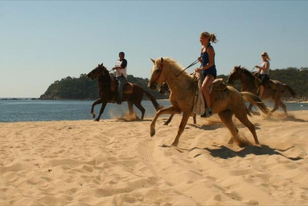 Best Western Posada Chahue - Ride a horse in Coyula and enjoy a delicious lobster.