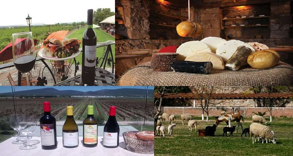 Best Western Tequisquiapan - Cheese and wine route
