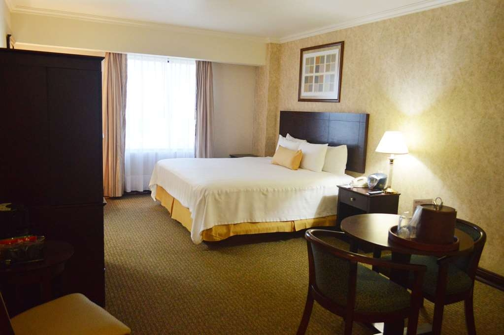 Best Western Plus Nuevo Laredo Inn & Suites - Our Single Standard room with a comfortable King size bed ideal for a good night rest.