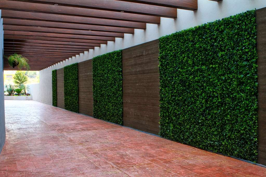 Best Western Plus Santa Cecilia Pachuca - Vista Exterior