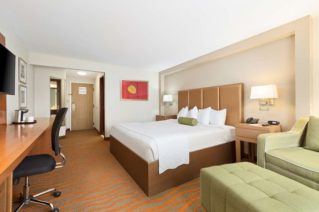 Best Western Plus San Jose - BWPLUS King