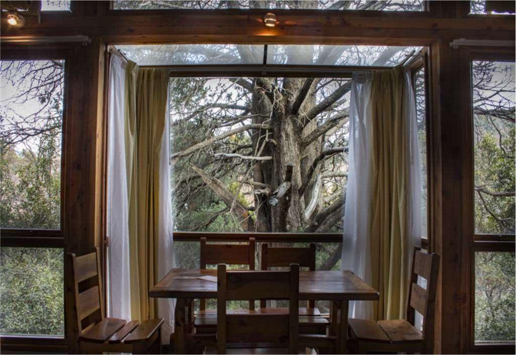 Best Western Villa Sofia Apart Hotel - Suite