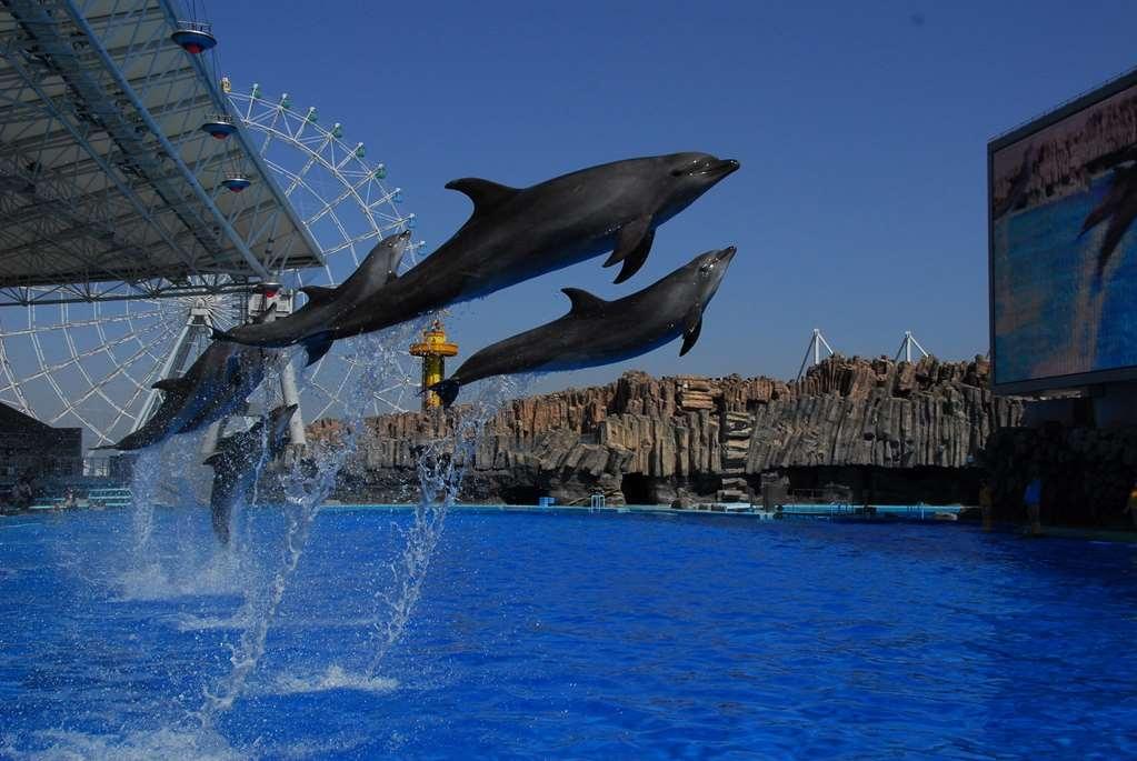 Best Western Hotel Nagoya - Port of Nagoya Public Aquarium