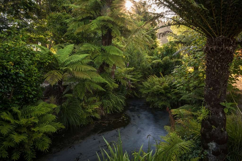 Best Western Braeside Rotorua - Trout Stream