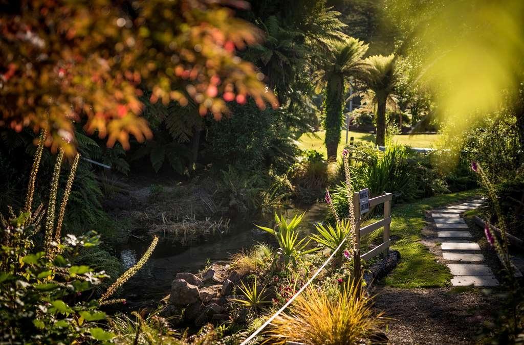 Best Western Braeside Rotorua - Garden