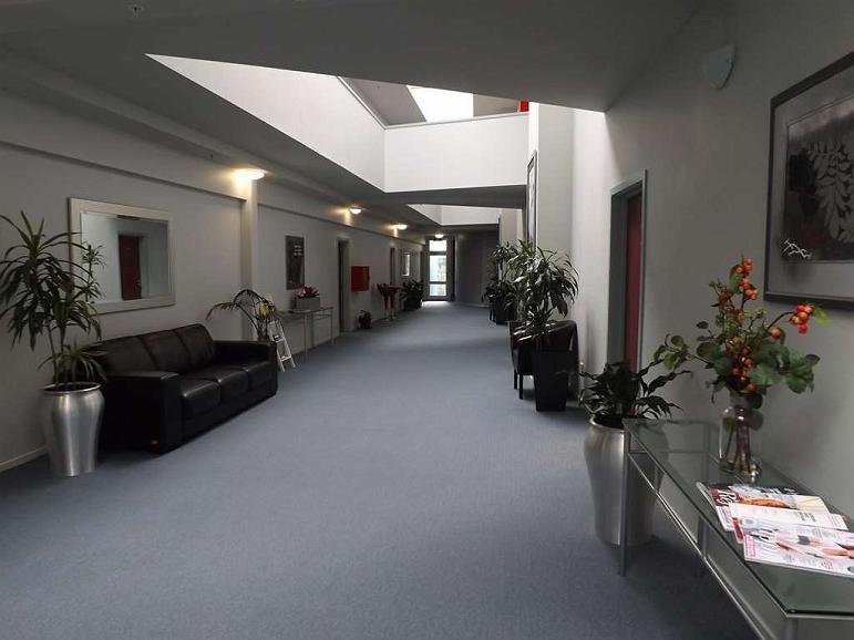 Best Western Wellington - hallway