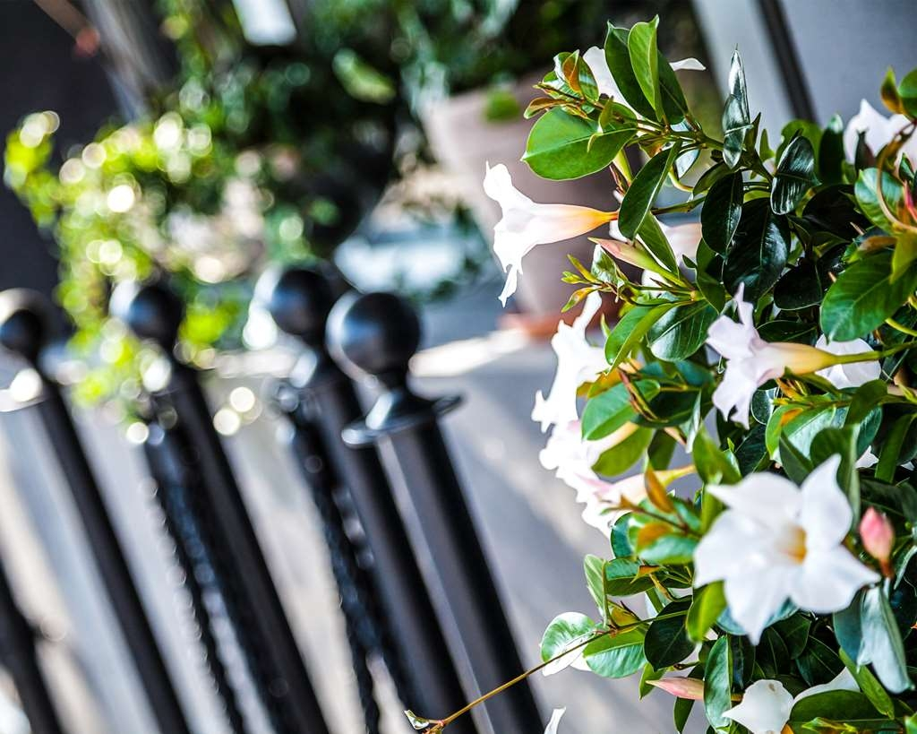 Best Western Hotell Karlshamn - Welcoming flowers outside the entrance.