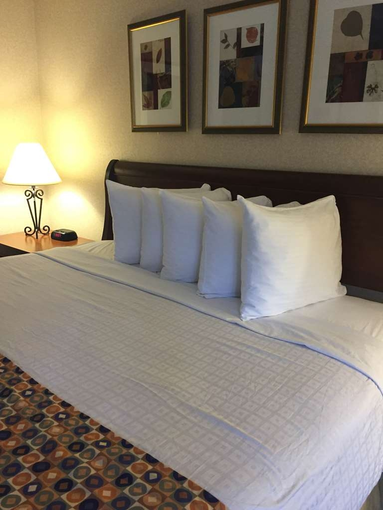 Hotel In Arlington Best Western Pentagon Reagan Airport Filter Udara Std Kc Nex Fluffy Pillows And Fresh Bedding Ensure A Great