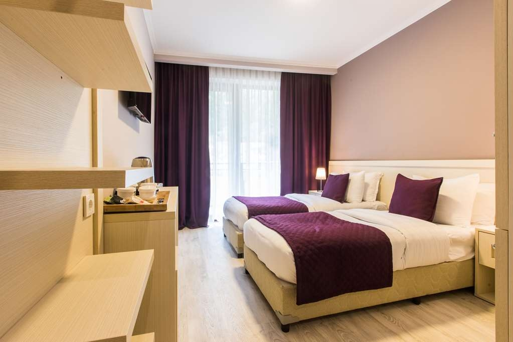 Best Western Sairme Resort - Standard Guest Room with Two Twin Size Beds