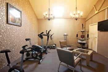 Best Western Plus Turnhout City Hotel - Sala fitness