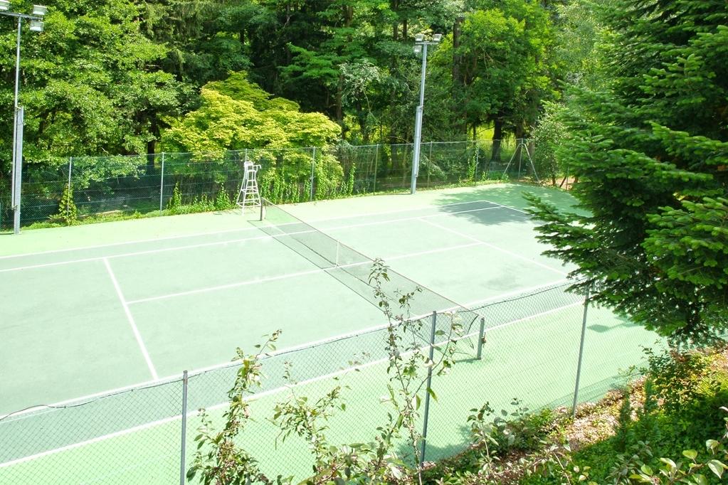 Best Western La Gentilhommiere - tennis