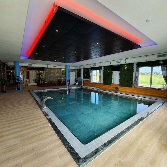 Best Western Hotel & SPA Pau Lescar Aeroport - Vue de la piscine